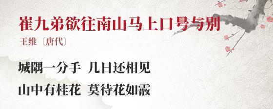 崔九弟欲往南山马上口号与别(作者王维简介)