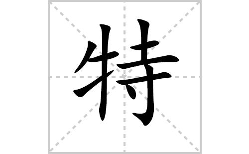 特的笔顺笔画怎么写(特的笔画、拼音、解释及成语详解)