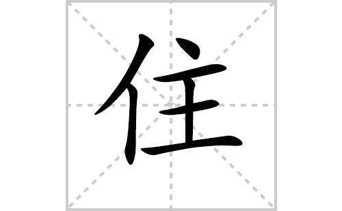 住的笔顺笔画怎么写(住的笔画、拼音、解释及成语详解)