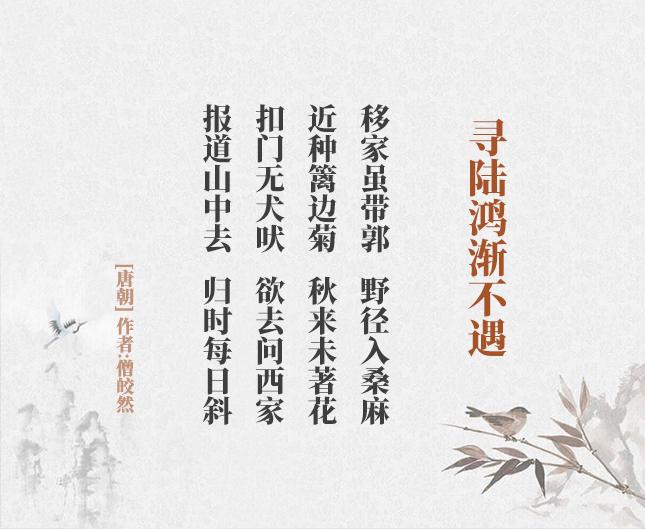 寻陆鸿渐不遇(古诗词作者、翻译注解及赏析)