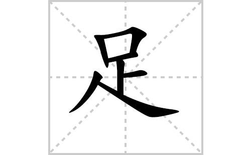 足的笔顺笔画怎么写(足的笔画、拼音、解释及成语详解)