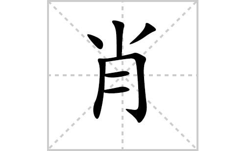 肖的笔顺笔画怎么写(肖的笔画、拼音、解释及成语详解)