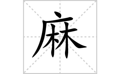 麻的笔顺笔画怎么写(麻的笔画、拼音、解释及成语详解)