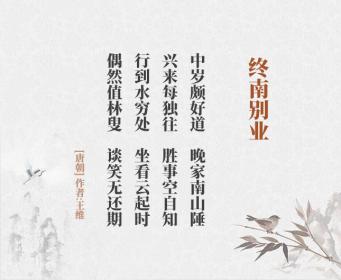 终南别业 王 维(古诗词作者