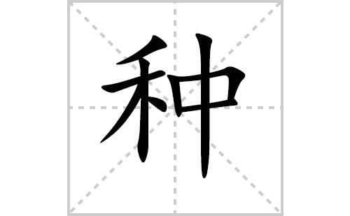 种的笔顺笔画怎么写(种的笔画、拼音、解释及成语详解)