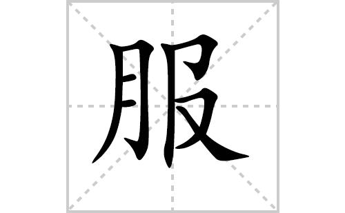服的笔顺笔画怎么写(服的笔画、拼音、解释及成语详解)