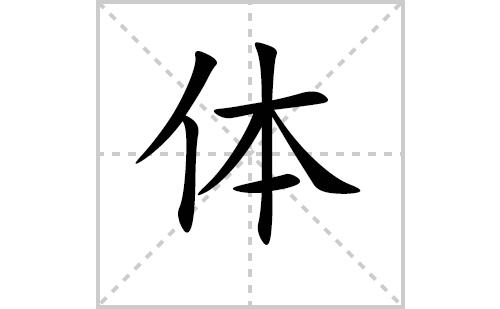 体的笔顺笔画怎么写(体的笔画、拼音、解释及成语详解)