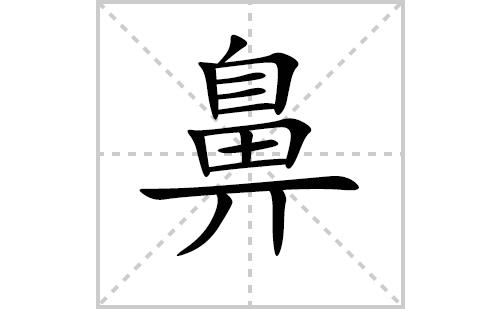 鼻的笔顺笔画怎么写(鼻的笔画、拼音、解释及成语详解)
