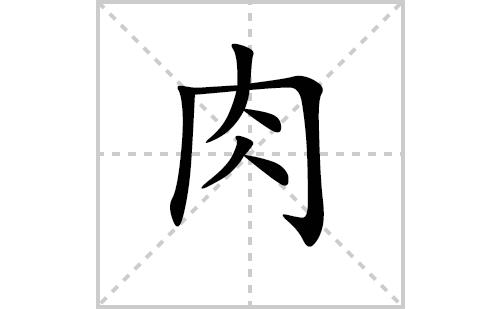 肉的笔顺笔画怎么写(肉的笔画、拼音、解释及成语详解)