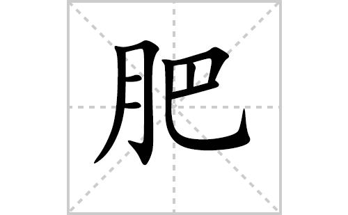 肥的笔顺笔画怎么写(肥的拼音、部首、解释及成语解读)