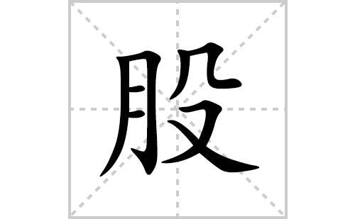股的笔顺笔画怎么写(股的拼音、部首、解释及成语解读)