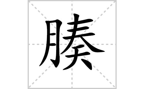 腠的笔顺笔画怎么写(腠的拼音、部首、解释及成语解读)