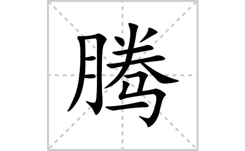 腾的笔顺笔画怎么写(腾的拼音、部首、解释及成语解读)