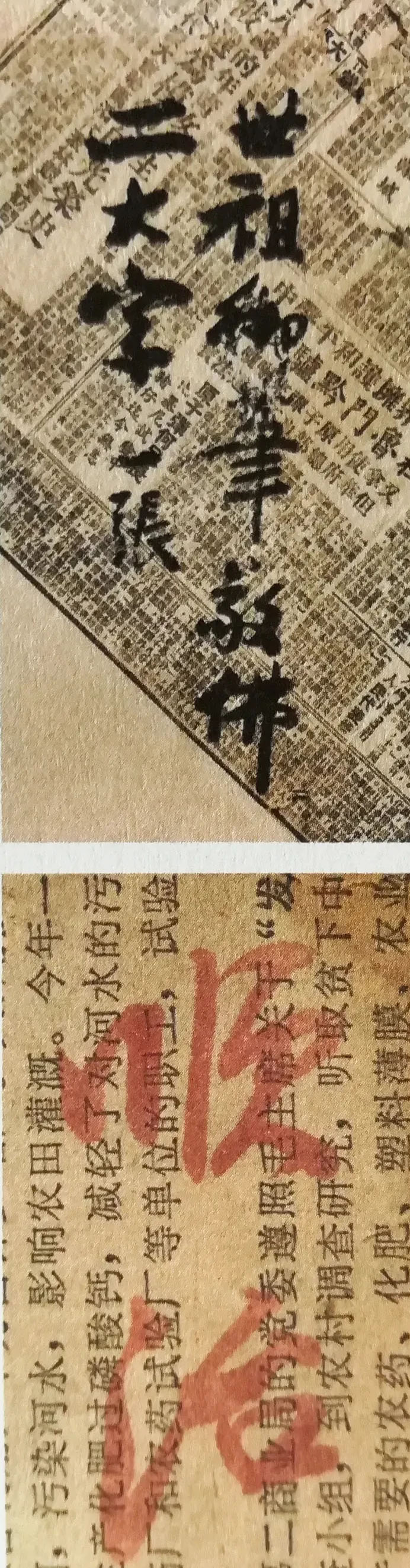 """启功在废纸上的""""随手写"""",才是其书法最高水平,异于成熟启功体"""