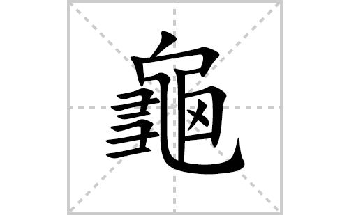 龜的笔顺笔画怎么写(龜的拼音、部首、解释及成语解读)