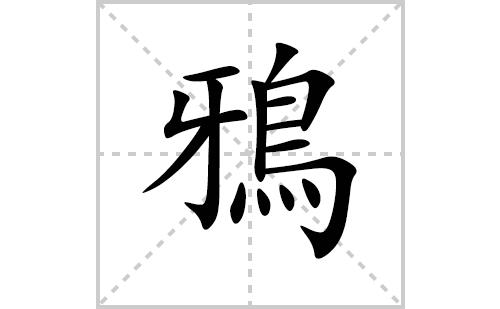 鴉的笔顺笔画怎么写(鴉的拼音、部首、解释及成语解读)